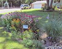 Rain Garden Opens in new window