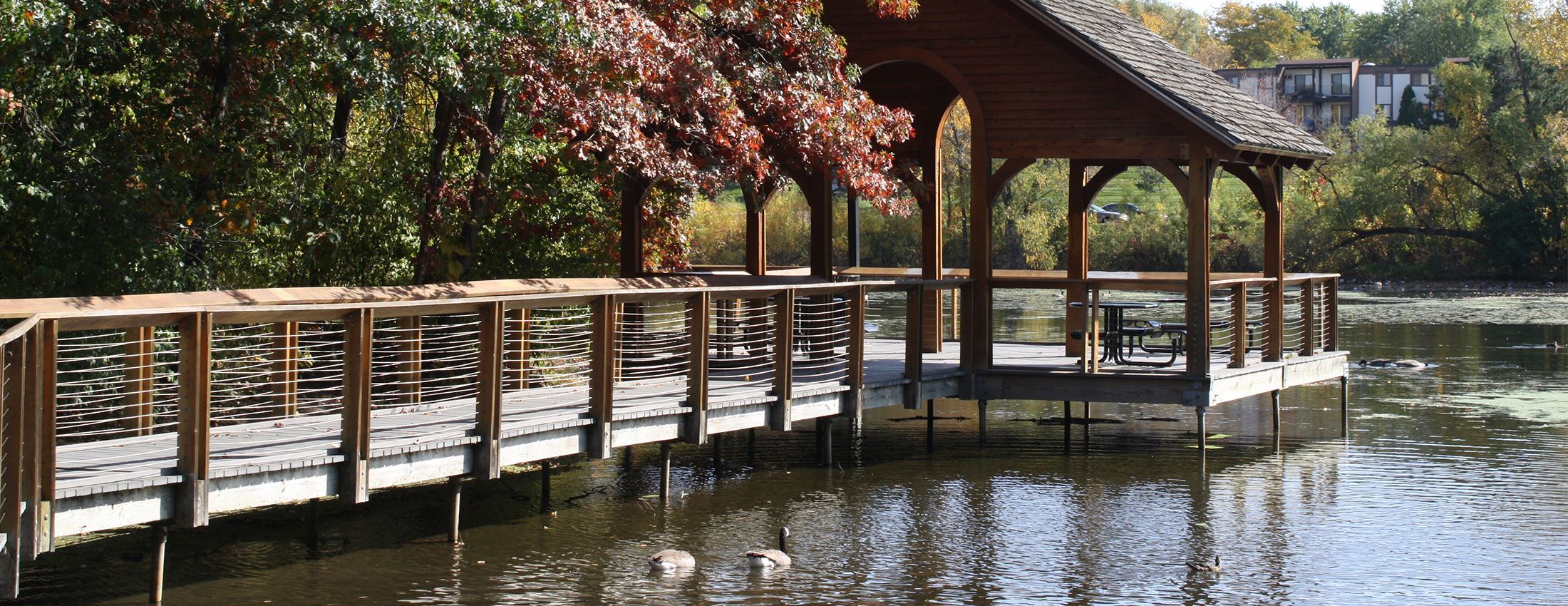 Wooden bridge and covered gazebo on a pond in Crosstown West Park