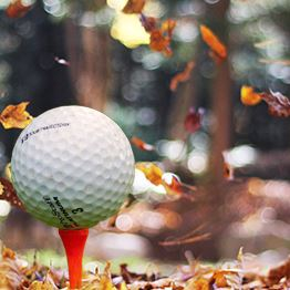 Golf ball on a tee in front of falling leaves