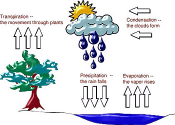 Water cycle illustration
