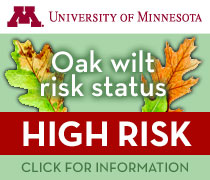 Oak wilt risk status